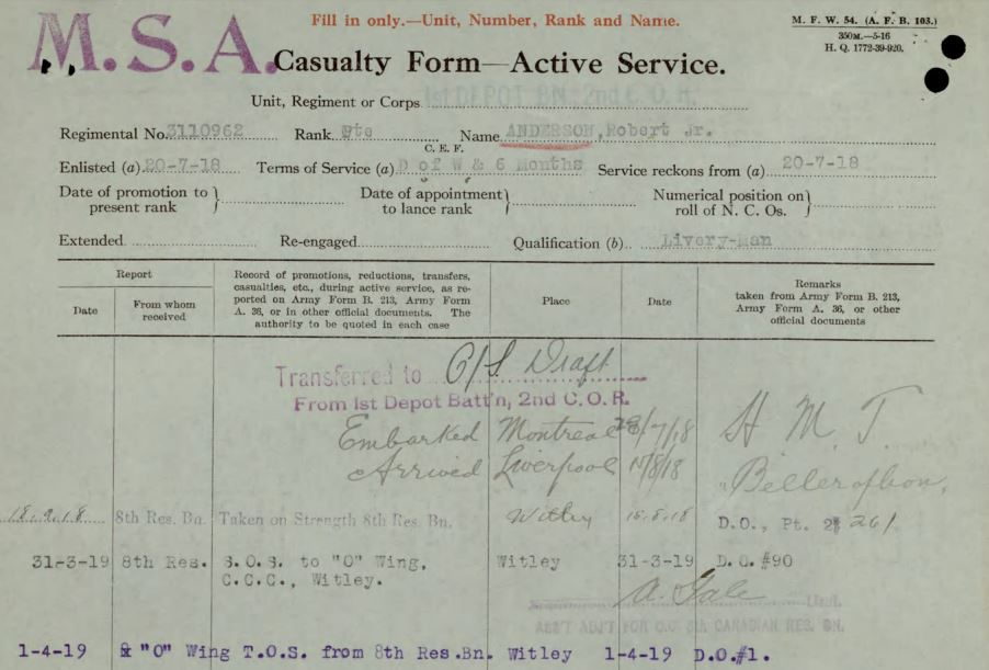 Anderson MSA Casualty Form